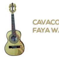 Cavaco Do Souto - Faya Waldir